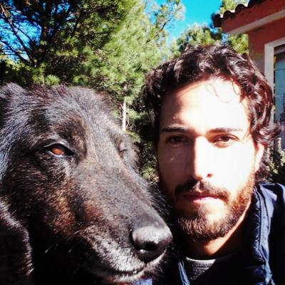 Tierra de Perros Colegio y Guardería Canina en Bogotá
